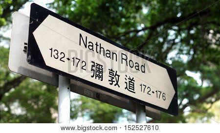 Hong Kong Nathan Road signage on green tree background