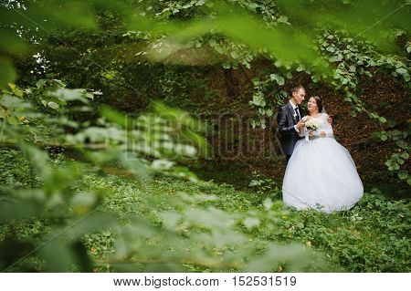 Wedding couple at green alley at wedding day