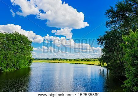 Small river with trees on the bank in summer day