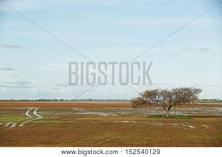 Flooded Landscape Australia