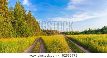 Rural landscape with road at summer. Panorama