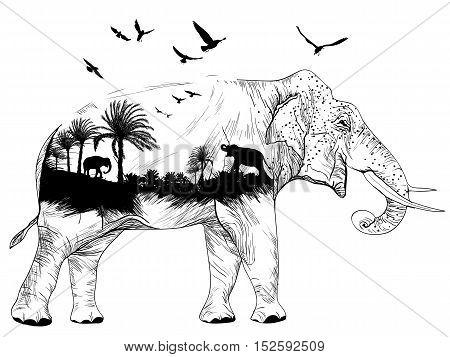 Vector Double exposure elephant for your design wildlife concept
