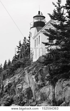 View of Bass Harbor Head Light in Acadia National Park, Maine (black and white).