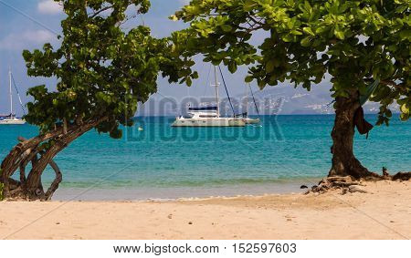 The catamaran and sailboats anchored in clear turquoise waters of Caribbean beach Martinique island French West Indies.