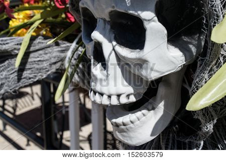 Laughing skull on fence post-Day of the Dead - Dia de Muertos