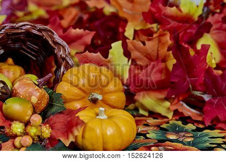 Two Mini Pumpkins With Fall Colored Leaves