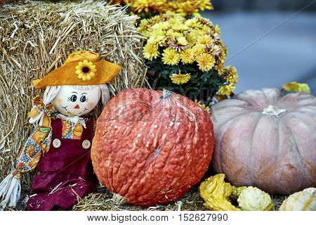 Doll made of straw posed on straw bale with large squash and chrysanthemums in the background