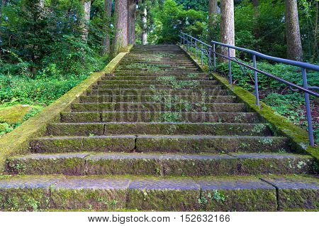 Old Stone Stairs Covered With Moss And Lichen