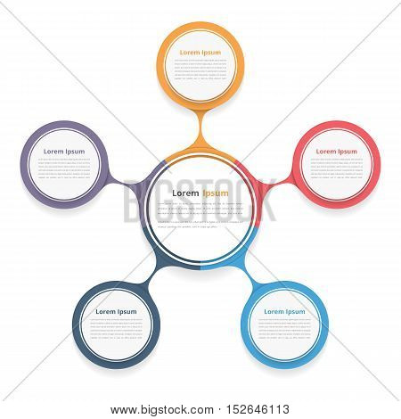 Circle diagram with five elements steps or options, flowchart or workflow diagram template, vector eps10 illustration