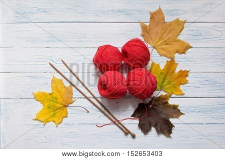Red yarn wooden knitting needles and yellow leaves are on white vintage wooden desk with place for your text. Top view.