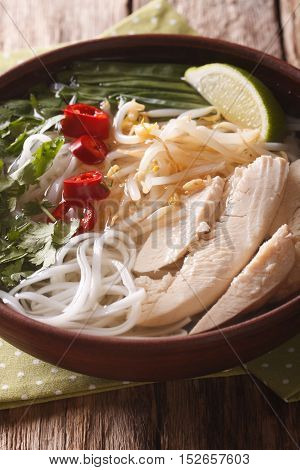 Vietnamese Cuisine: Soup Pho Ga With Chicken, Rice Noodles And Fresh Herbs Close-up. Vertical