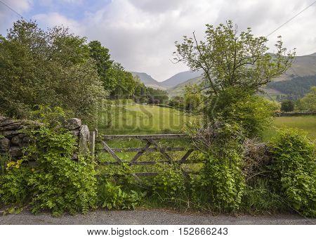 Pretty view with farm gate, Grasmere, The Lake District, Cumbria, England