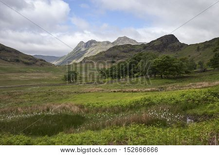 View towards Side Pike from Blea Tarn, The Lake District, Cumbria, England