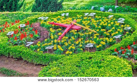 Flower garden with giant clock in the park