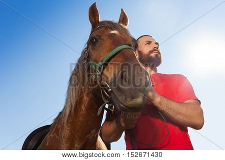 Bottom view portrait of young man holding his bay horse by the bridle against blue sky