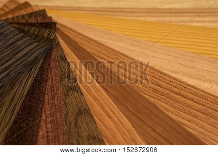 Color Palette And Wood Texture Samples Guide