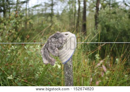 Werkhandschoen op een paal met schrikdraad in het bos