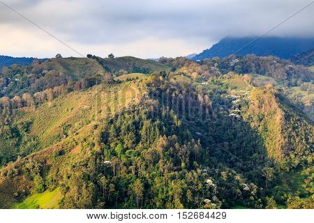 jungle in colombian green mountains colombia latin america