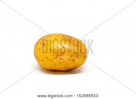 Ripe potato on white background. Brown and yellow vegetable isolate image. Single oval potato photo. Picture of raw potato for cooking. Vegetarian food. French fries or mashed potato ingredient