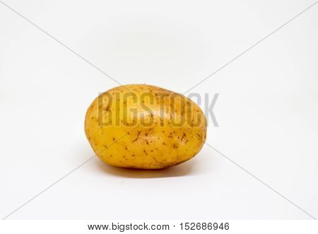Ripe golden potato on white background. Brown and yellow vegetable isolate image. Single oval potato photo. Picture of raw potato for cooking. Vegetarian food. French fries or mashed potato ingredient
