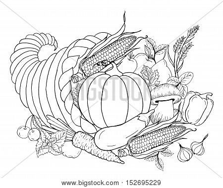Thanksgiving cornucopia with vegetables. Horn of plenty. Black white hand drawn vector illustration. Traditional symbol of Thanksgiving autumn. Sketch for coloring page decoration card poster