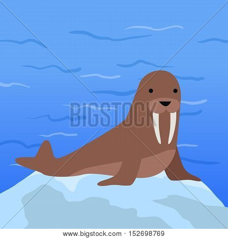 Funny walrus on background of arctic glacier. Brown walrus with white fangs. Animal adorable walrus vector character. Charming walrus. Wildlife character