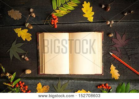 Autumn still life. Open vintage notebook with pencil autumn leaves, acorn and rowan over rustic background. Thanksgiving Day.