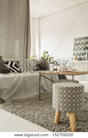 Light Apartment With Sofa