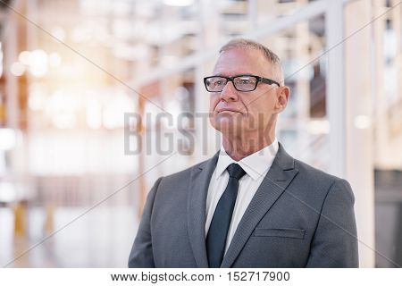 Confident mature businessman in glasses looking pensive while standing in the lobby of a modern office building