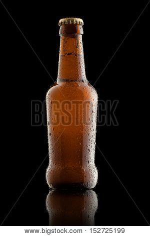 Wet Beer Bottle Isolated on Black Background