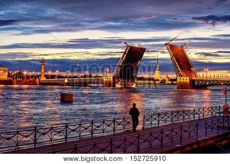 Panoramic View Over Neva River In White Night Time, St Petersburg, Russia