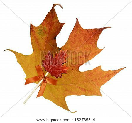 Fall Maple leaf with Maple Candy Lollipop