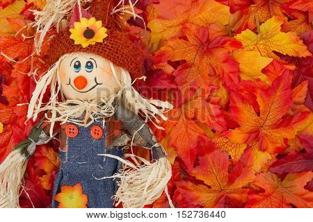 Halloween Scarecrow Scene Some fall leaves and girl scarecrow with copy-space