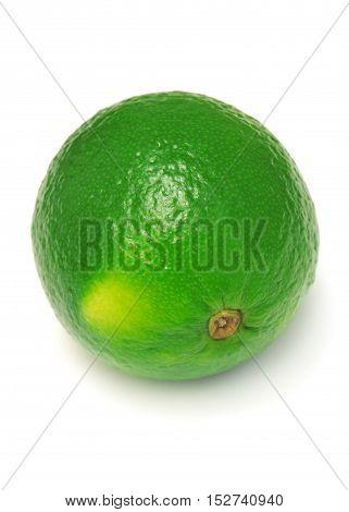 Lime isolated on white background. Fruit. Flat.