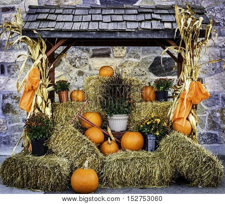 WATERLOO, CANADA - OCTOBER 6, 2016: Pretty fall pumpkin display at Waterloo Farmers Market, Waterloo. The market is in the heart of fertile farmland where local farmers bring their produce to sell.