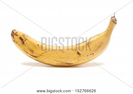 Single banana isolated on a white background