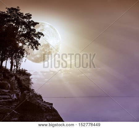 Silhouettes of tree against sky over tranquil sea. Nighttime sky with large moon with ray. Full moon behind trees. The moon were NOT furnished by NASA. poster