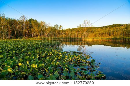 Beaver Marsh in Cuyahoga Valley National Park between Cleveland and Akron