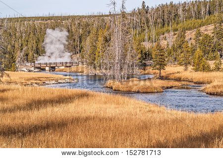 A blue river leads you through golden grasses to a bridge and a bit of geyser activity beyond in Yellowstone National Park