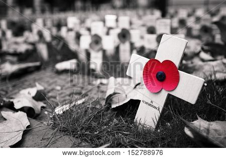 Poppy Cross