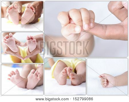 Infant new born collection. New born baby body parts.