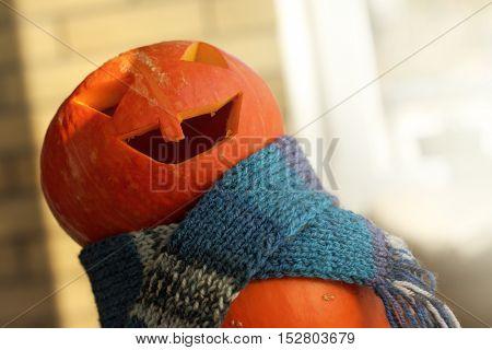 orange pumpkin in a dark blue scarf crazy guffaws / festive fun Halloween story