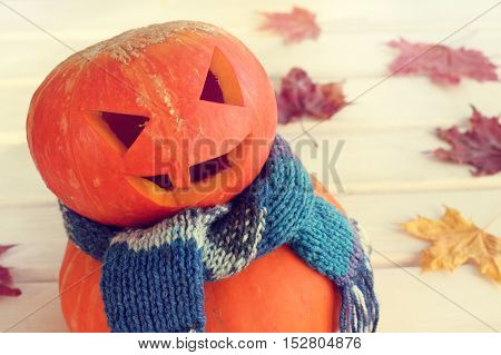 smiling pumpkin in a warm scarf on the background of autumn leaves / orange festive mood