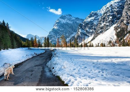 Alps mountain landscape in the late autumn season. Snow fall early winter and late autumn.