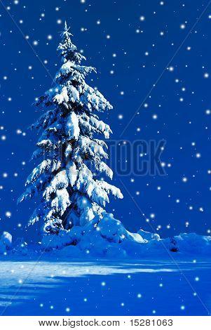 Moonlit Christmas tree on a snowy night in december