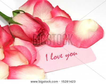 Love note with roses and rose petals