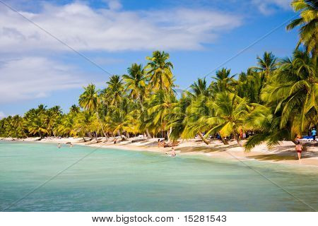 Beautiful island beach. Saona Island, Dominican republic.