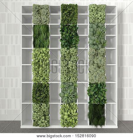 Empty bookshelf with vertical garden, 3d illustration