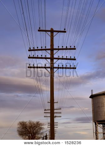 Telegraph Lines