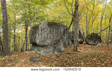 Large Precambrian Boulders In A Fall Forest - Ontario, Canada